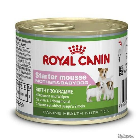 HACHIKO đại lý thức ăn của hãng ROYAL CANIN đến từ PHÁP - 27