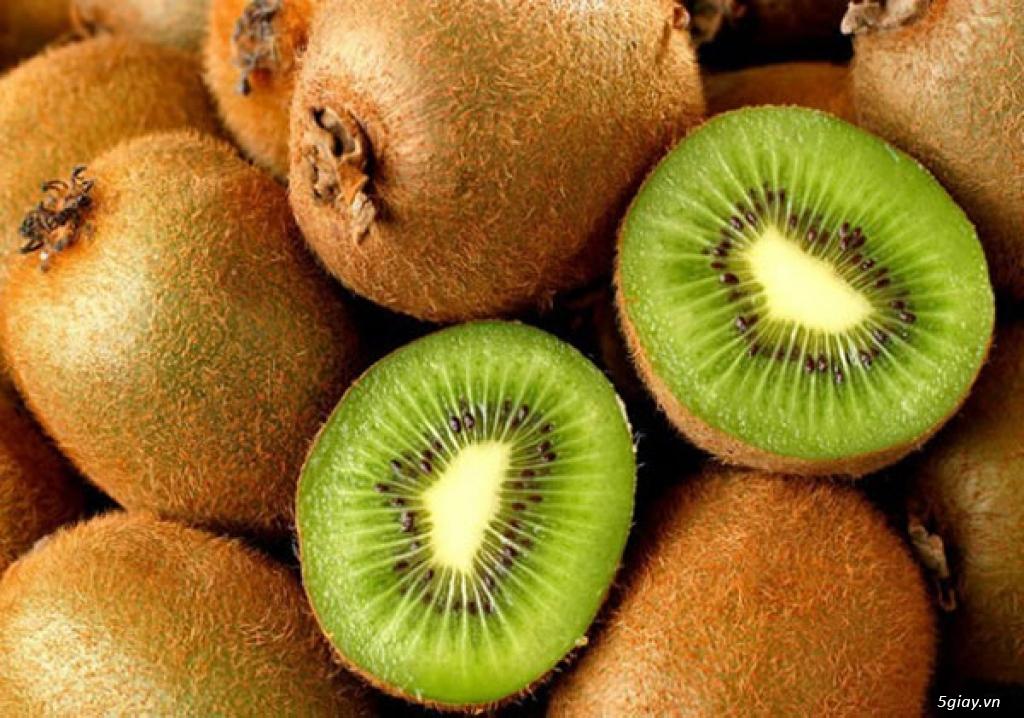 Cây Giống KiWi - Cây leo cho quả bổ dưỡng - 3