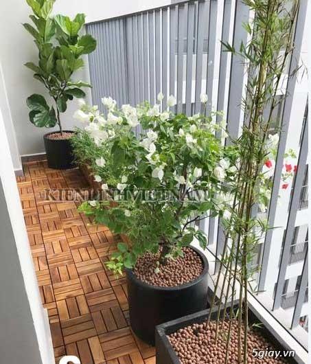 Vỉ gỗ lót sàn ban công, sân thượng - 1