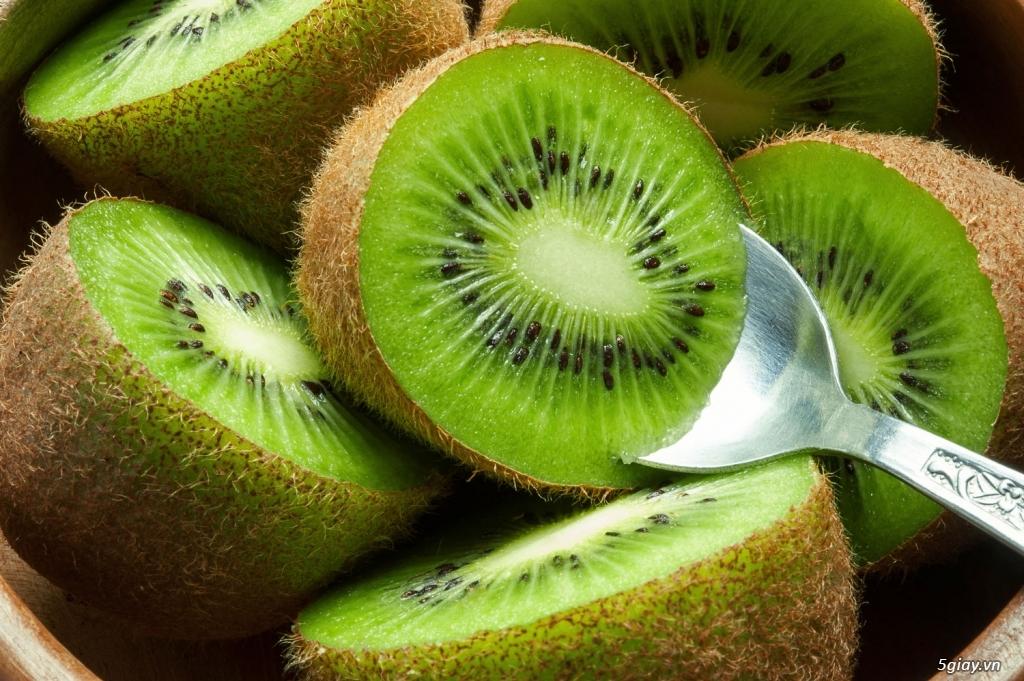 Cây Giống KiWi - Cây leo cho quả bổ dưỡng