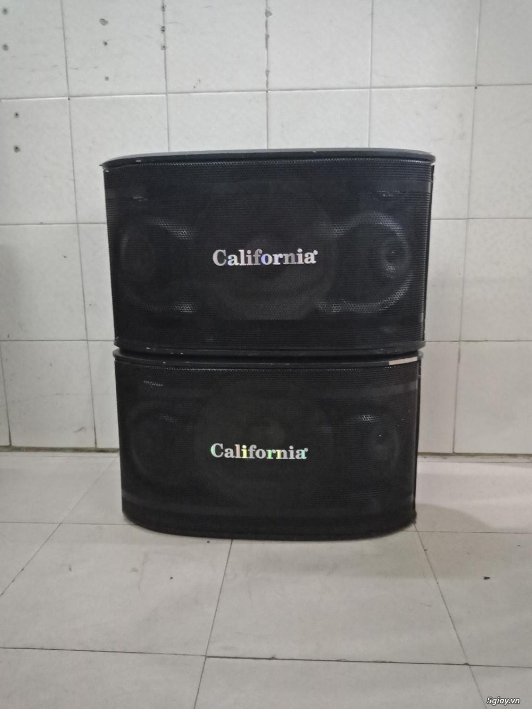 Thanh lý Loa karaoke bass 25cm các loại - 2
