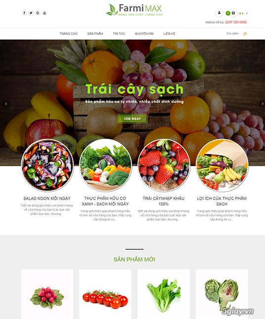 Thiết kế Website Chuyên nghiệp, Giá rẻ chỉ từ 1 triệu VNĐ - 3