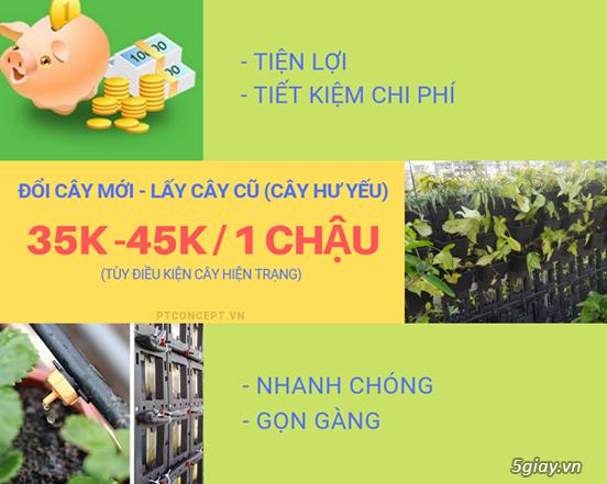 Ptconcept.vn – Dịch vụ cảnh quan độc đáo - 3