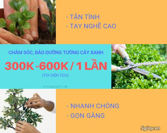 Ptconcept.vn – Dịch vụ cảnh quan độc đáo - 2
