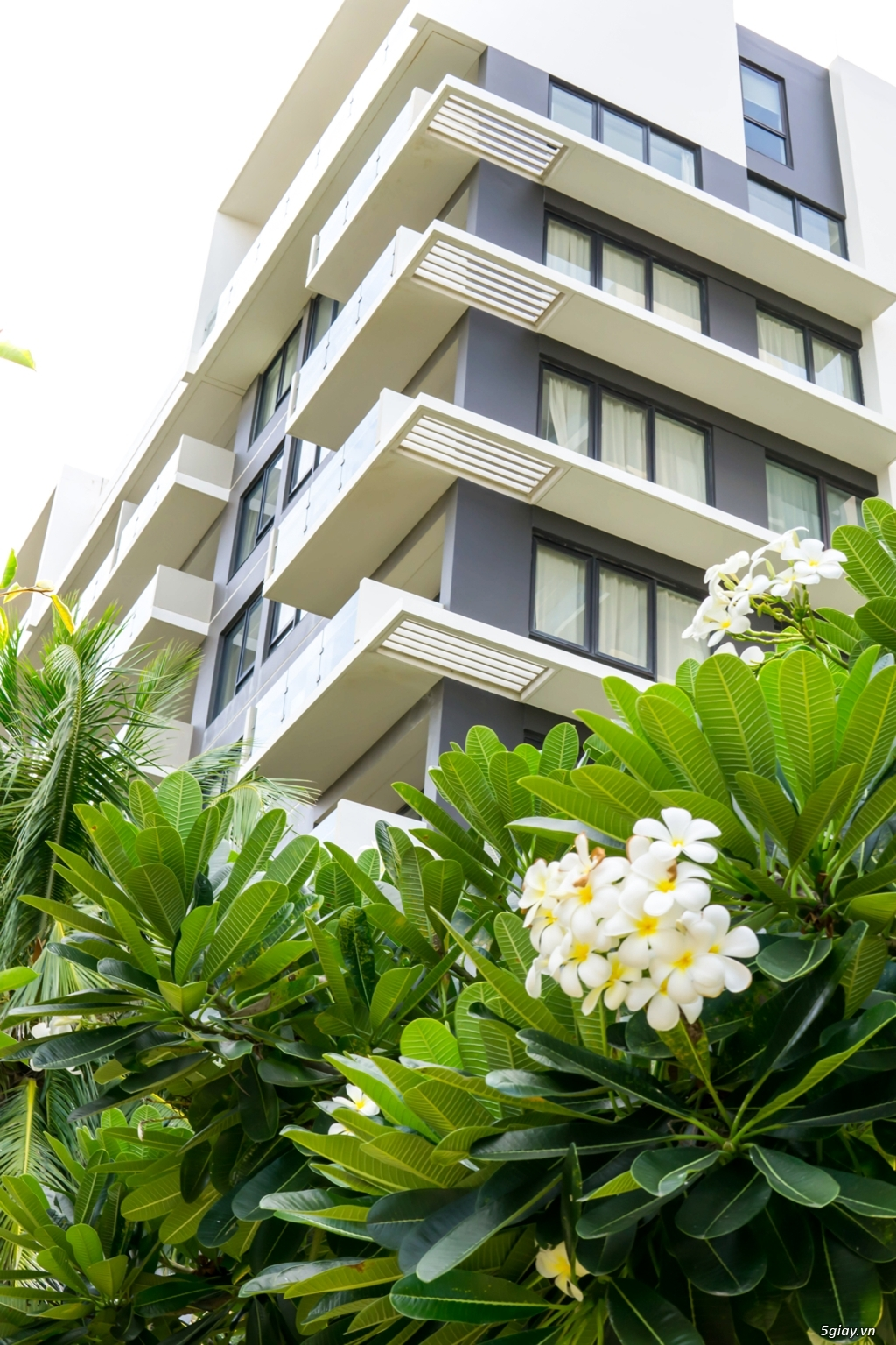 Cần bán gấp căn hộ nghỉ dưỡng cao cấp 1 phòng ngủ thuộc Hyatt Đà Nẵng - 1