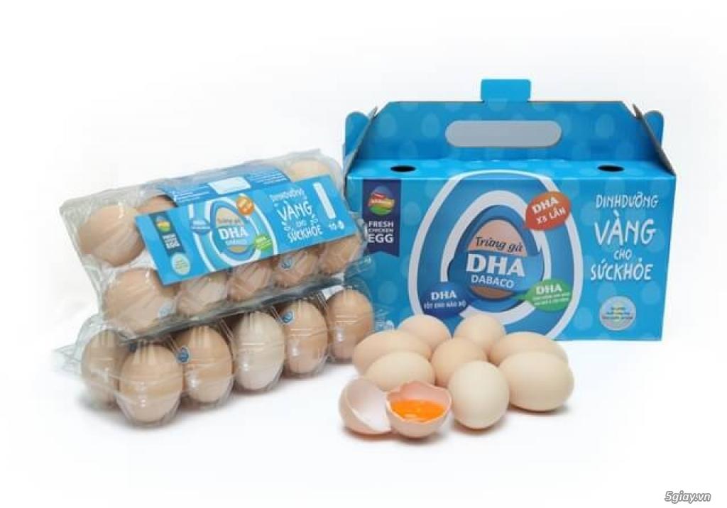 Trứng gà DHA