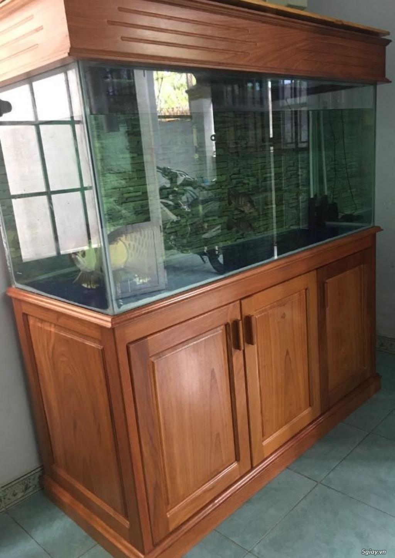 Bán hồ cá kính cường lực 10mm: Dài 1.4m x Rộng 0.9m x cao 0.8m