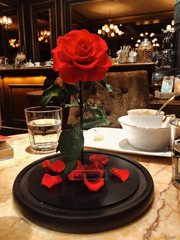 HCM - Hoa hồng vĩnh cữu đặt trong lọ kính cực kỳ sang trọng - 5