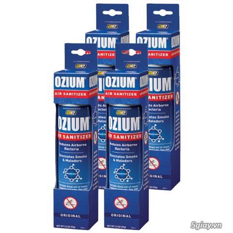 Giải pháp bảo vệ mẹ bầu hỏi các những cơn ốm nghén vì mùi_Ozium - 2