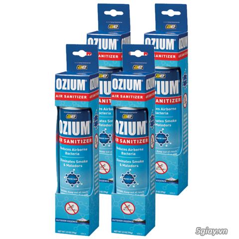Giải pháp bảo vệ mẹ bầu hỏi các những cơn ốm nghén vì mùi_Ozium - 3