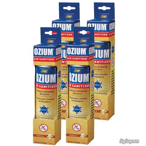 Giải pháp bảo vệ mẹ bầu hỏi các những cơn ốm nghén vì mùi_Ozium - 4