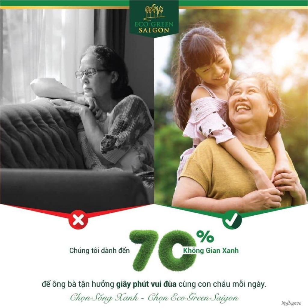 Căn Hộ Cao Cấp Eco Green Sài Gòn Quận 7 - 2