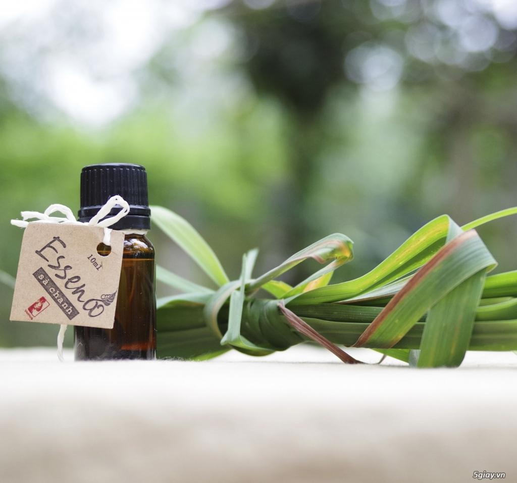 tinh dầu sả chanh - đuổi muỗi- tinh dầu ấn độ chất lượng giá siêu yêu - 2