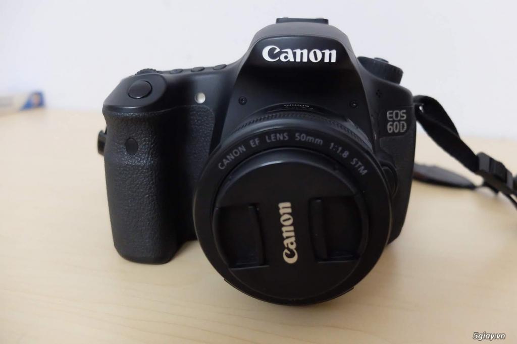 Canon 60D + lens fit 50mm 1.8 STM - 8