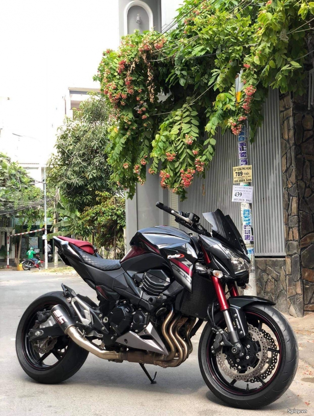 Z800 ABS 2016 CANDY HQCN - 4