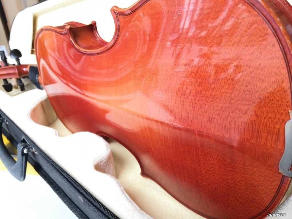 Violin Đức handmade tiếng bao hay - 3