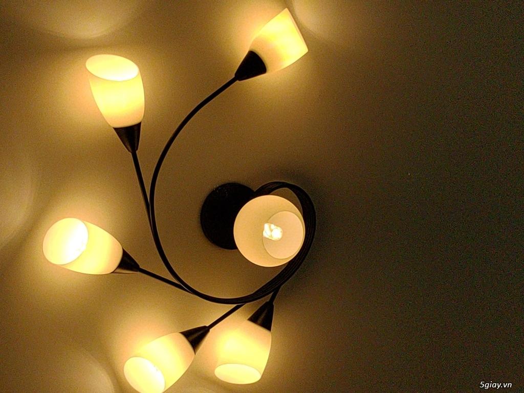 Cần bán đèn ốp trần - 1