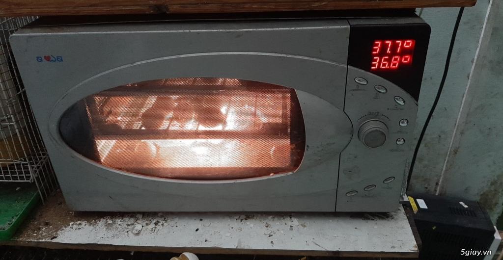 Máy ấp trứng tự động mini giá rẽ - 3