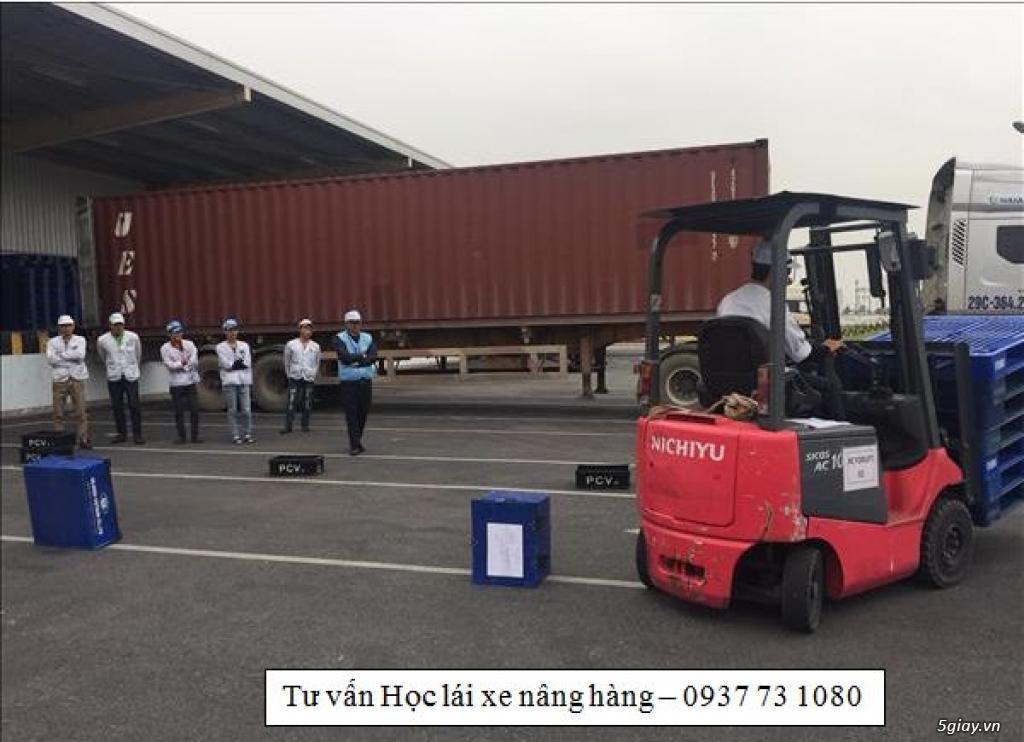 BÌnh Dương- Trường cao đẳng nghề dạy lái xe nâng/ xe công trình - 1