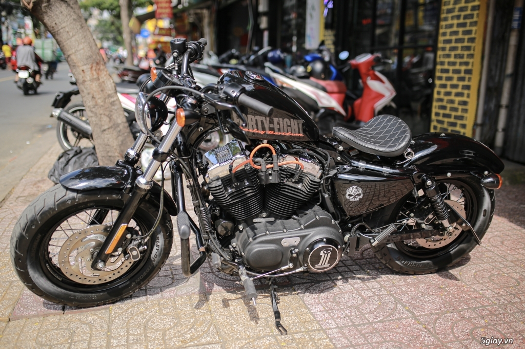 Harley davidson 48 hqcn giá sinh viên - 3
