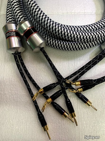 Dây Audio DIY và dây bãi chọn lọc. - 15