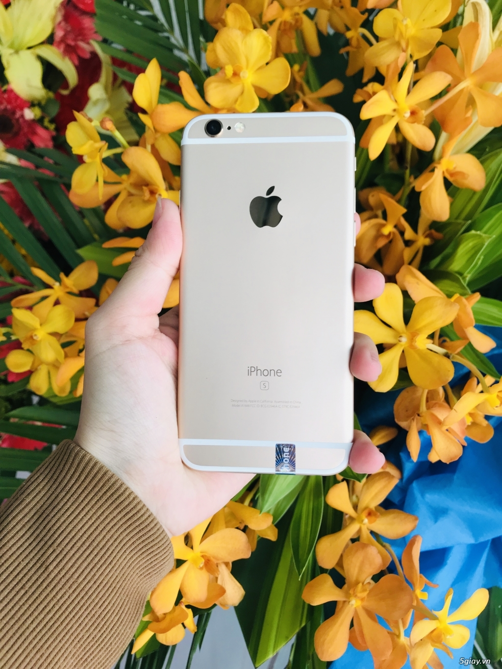 iphone 6s gold 16gb đẹp 99%