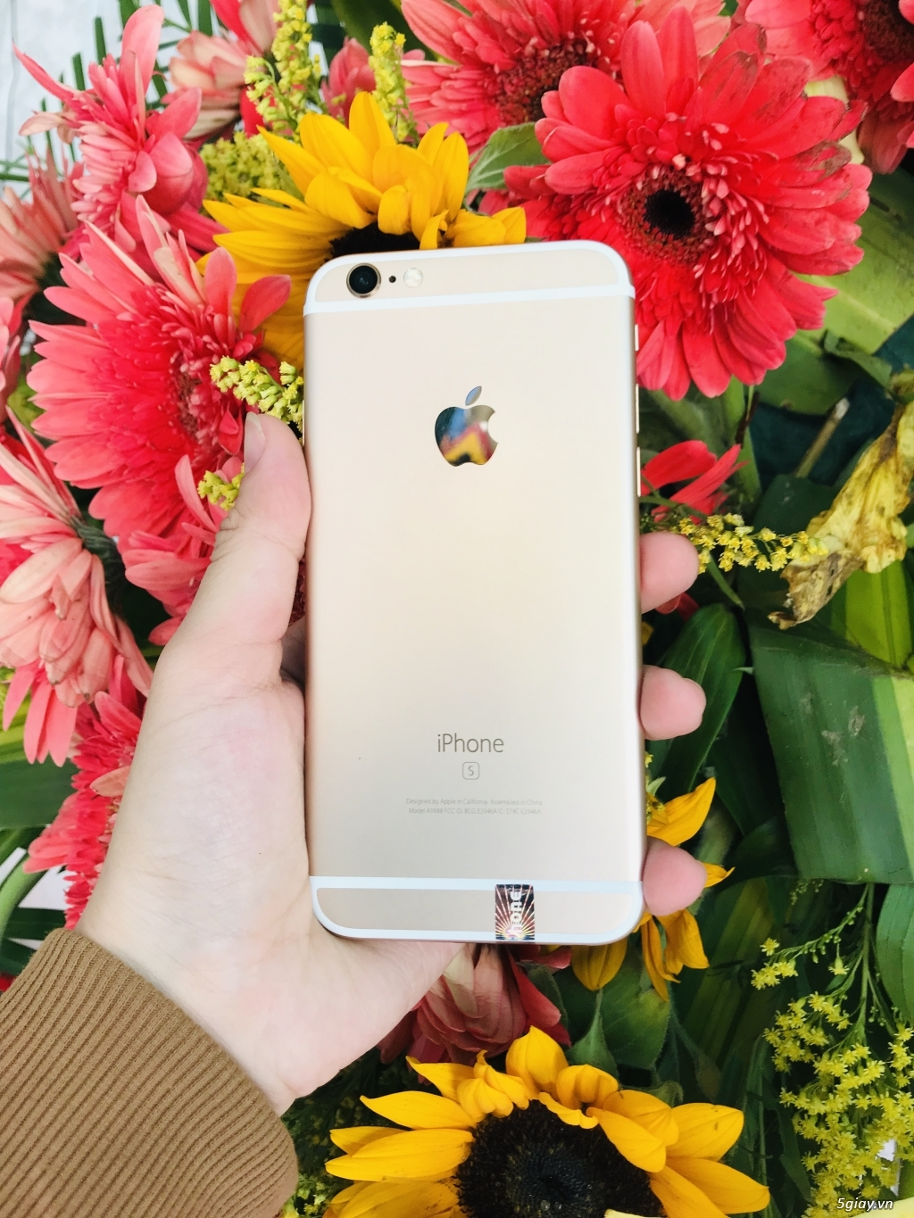 iphone 6s gold 16gb đẹp 99% - 1