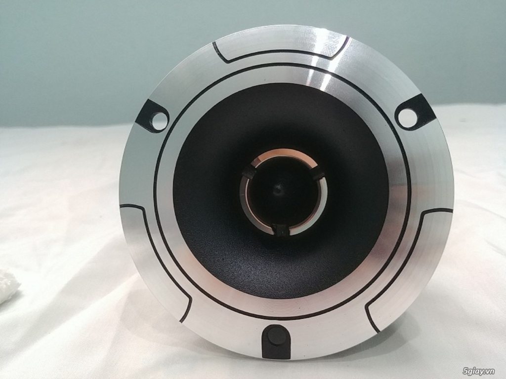 Loa Treble Pioneer P8801 - 4