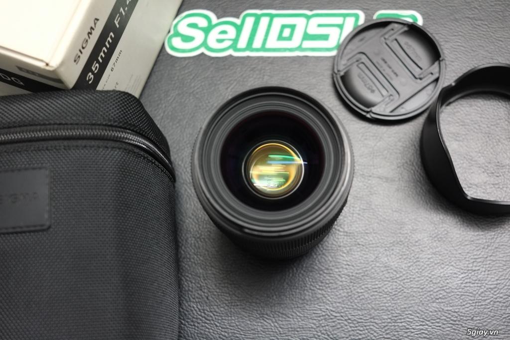 Canon 35F1.4 / 70-200F4 / 70-200F2.8 / Sigma 85 ART / 35 ART / 30 ART - 8