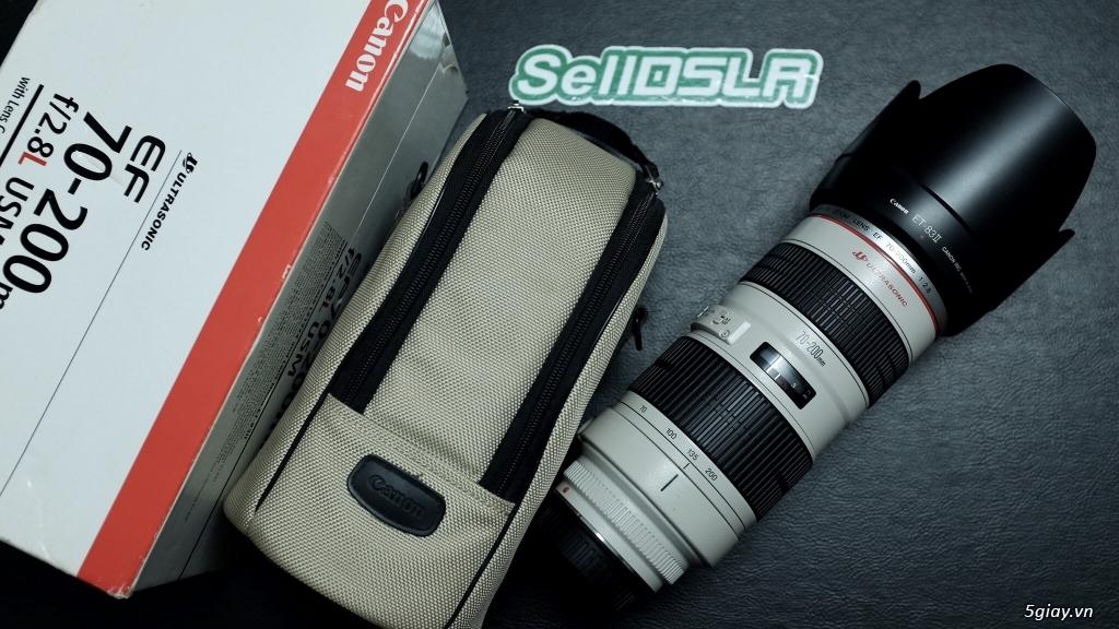 Canon 35F1.4 / 70-200F4 / 70-200F2.8 / Sigma 85 ART / 35 ART / 30 ART - 15