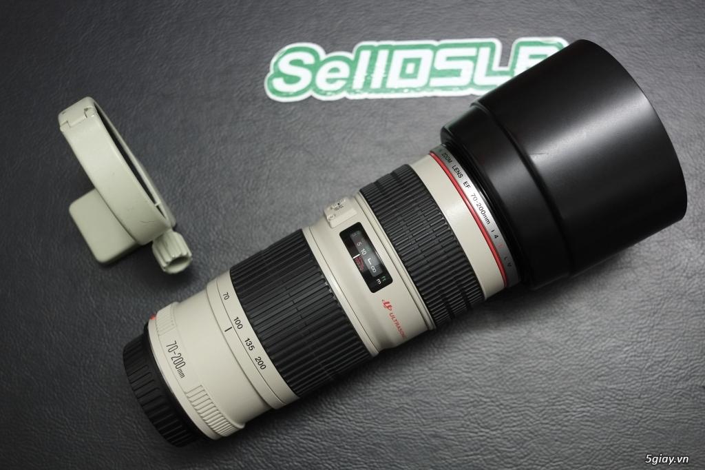 Canon 35F1.4 / 70-200F4 / 70-200F2.8 / Sigma 85 ART / 35 ART / 30 ART - 10