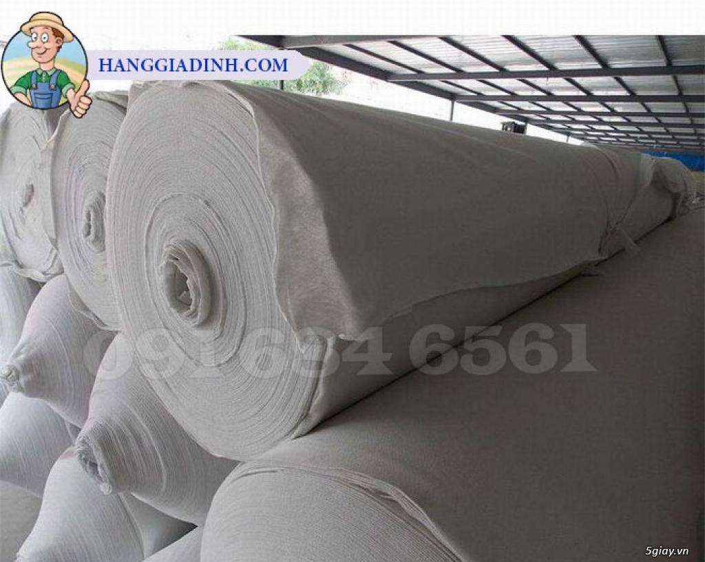 Vải địa kỹ thuật Màng chống thấm tổng hợp - 11