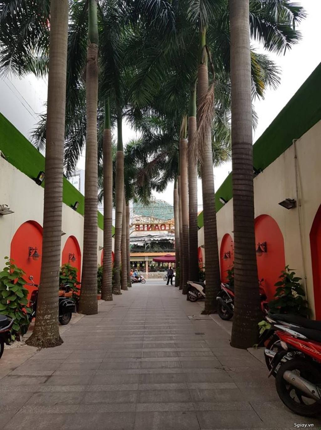 Tân Bình-Văn Phòng từ 1tr3/ bàn, 5tr/ phòng, 145.000đ/m2, tổng 5000m2 - 3