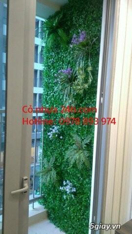Cỏ nhựa trang trí tường, cỏ nhân tạo giá rẻ tại Hà Nội