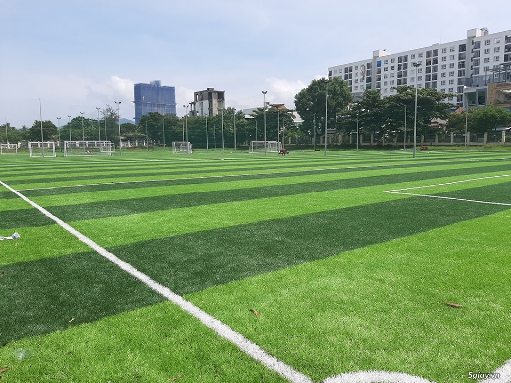 Cho thuê đất làm sân bóng Linh Đàm, Hoàng Mai 5000m2 - 2