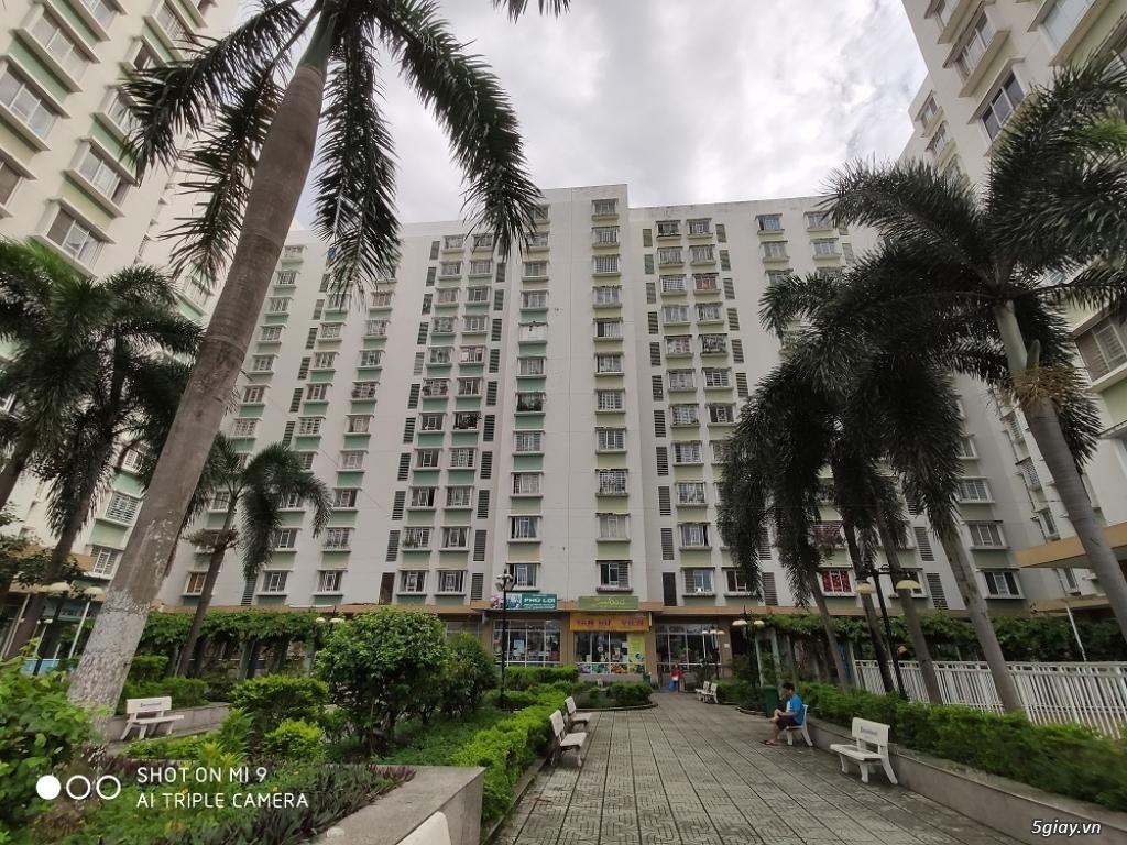 Chính chủ bán căn hộ chung cư  Q8 Phú Lợi D1 ,71m2, 2PN, sổ hồng - 6