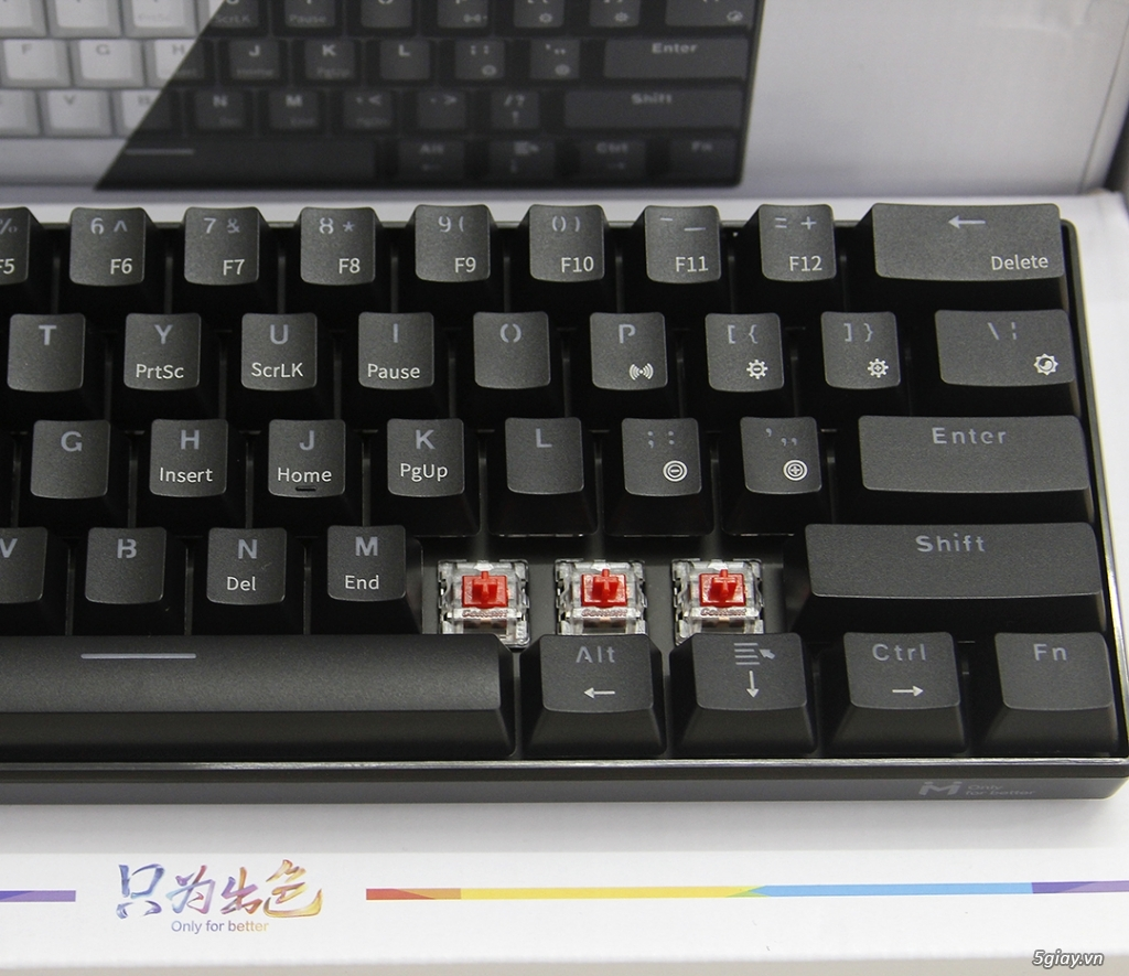 Bàn Phím Cơ Không Dây Bluetooth Cao Cấp, 61 Phím, Red Switch, LED Mono - 7