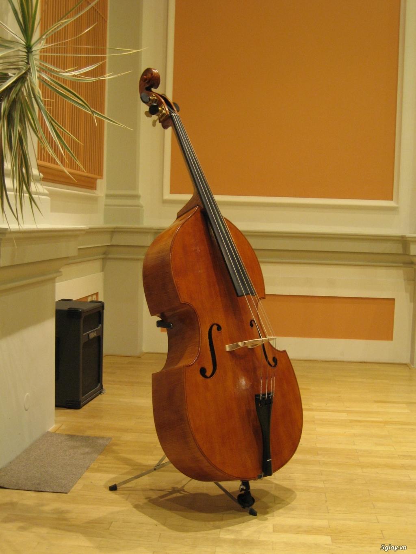 HCM - Cho thuê Contrabass, Piano điện...chụp hình, biểu diễn làm Event