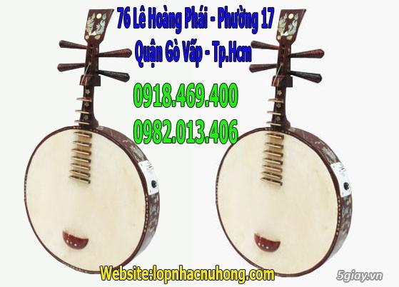 Bán đàn đoản cao cấp giá rẻ tại nhạc cụ Nụ Hồng - 2