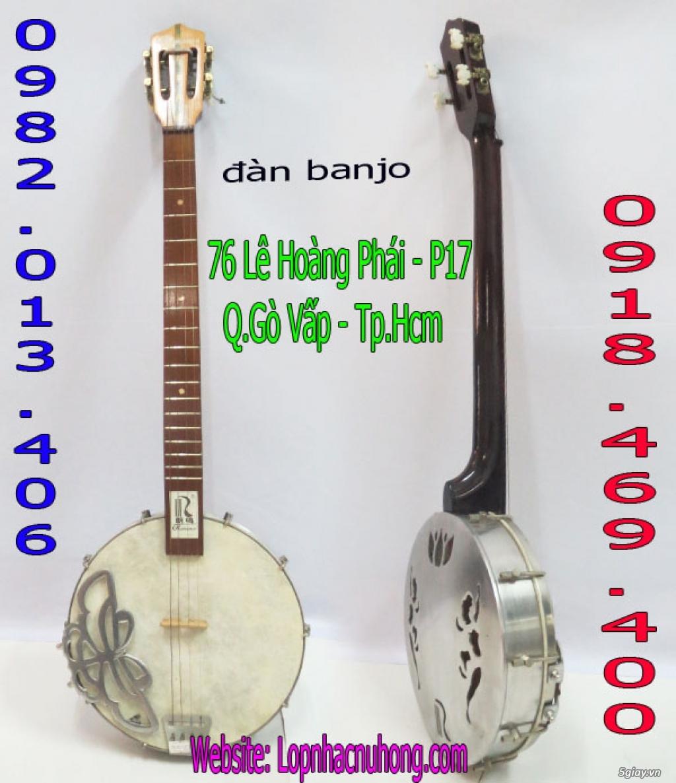 Bán đàn banjo ngoại nhập giá rẻ tại nhạc cụ Nụ Hồng - 1