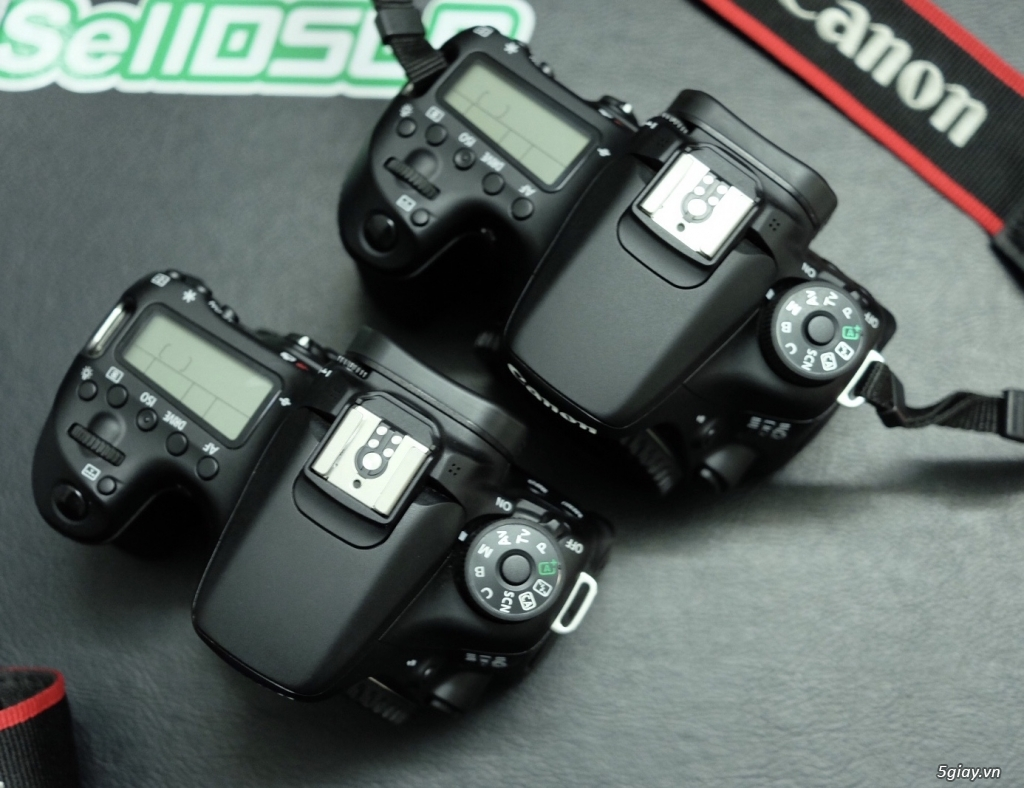 Canon 5D4 / 6D / 70D / 700D / 35F1.4 L ii / 135L / 70-200 / 35 Art - 15