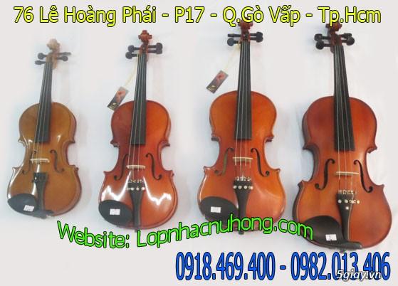 Cửa hàng bán đàn violin cao cấp giá ưu đãi toàn quốc