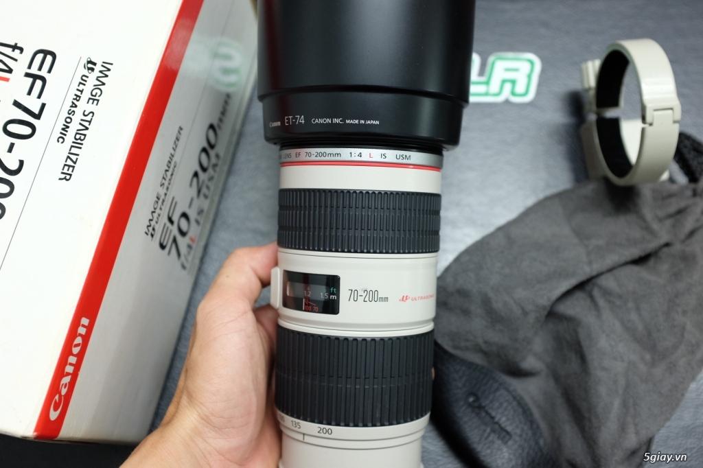 Canon 5D4 / 6D / 70D / 700D / 35F1.4 L ii / 135L / 70-200 / 35 Art - 48