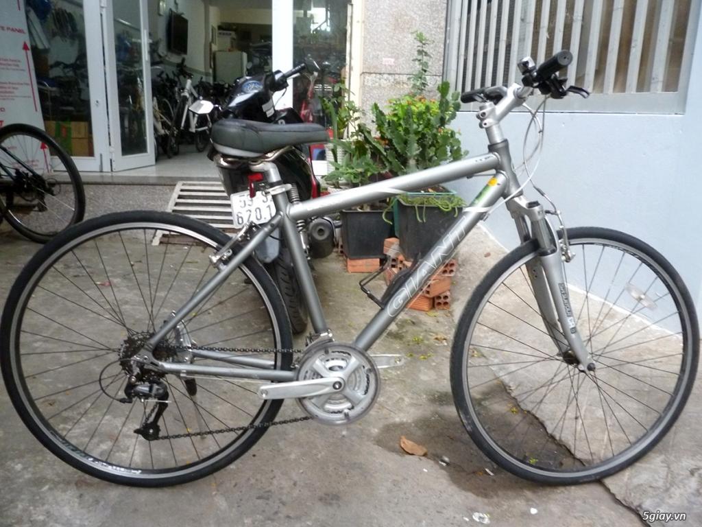 Dzuong's Bikes - Chuyên bán sỉ và lẻ xe touring thể thao hàng bãi Nhật - 7