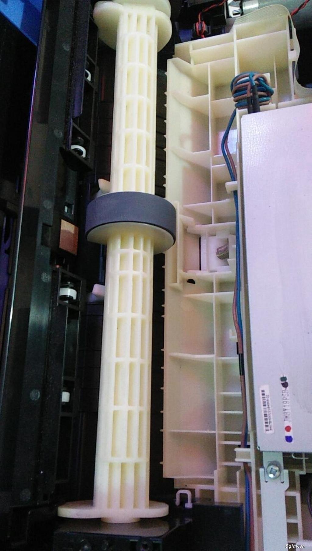 Cung cấp quả đào cuốn giấy,trục kéo giấy máy in Epson C5290 tại Quận 3