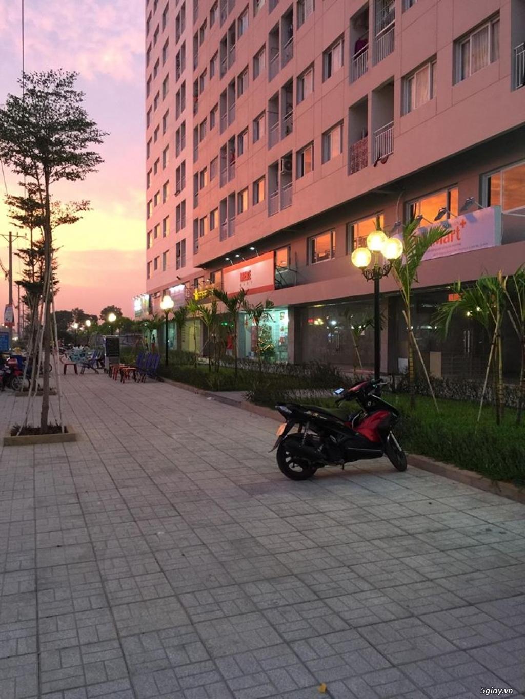 bán gấp căn hộ cap cấp Hànquốc 50m2 Greenhills, GreenTown Bình Tân - 5