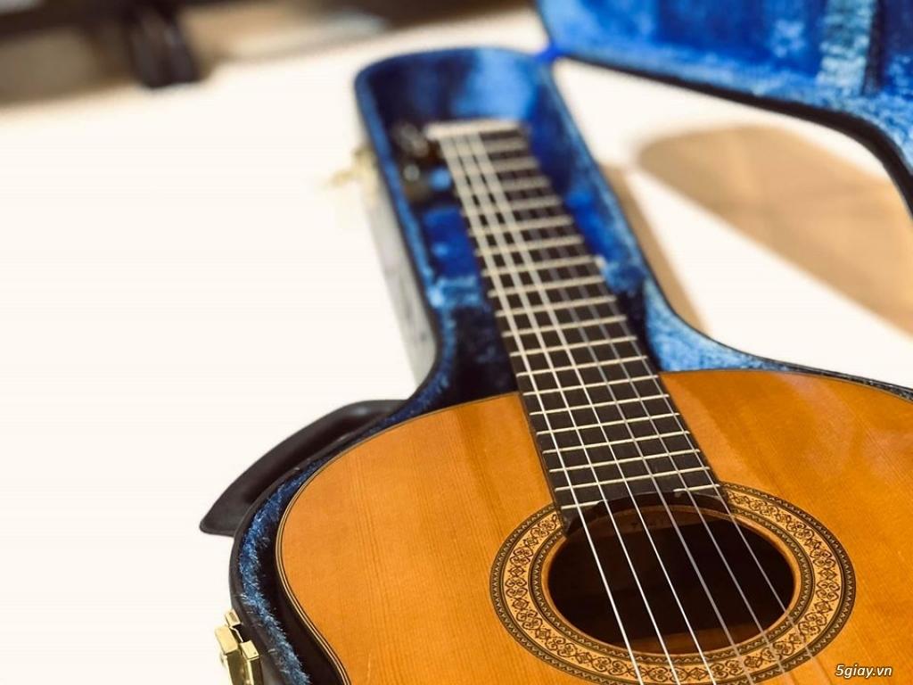 Cần bán : Guitar Yamaha nội địa Nhật - 1