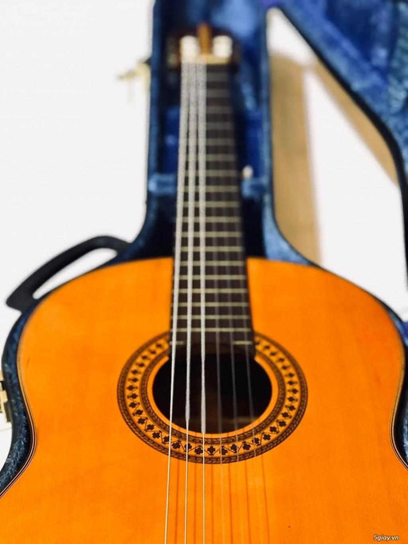 Cần bán : Guitar Yamaha nội địa Nhật - 5