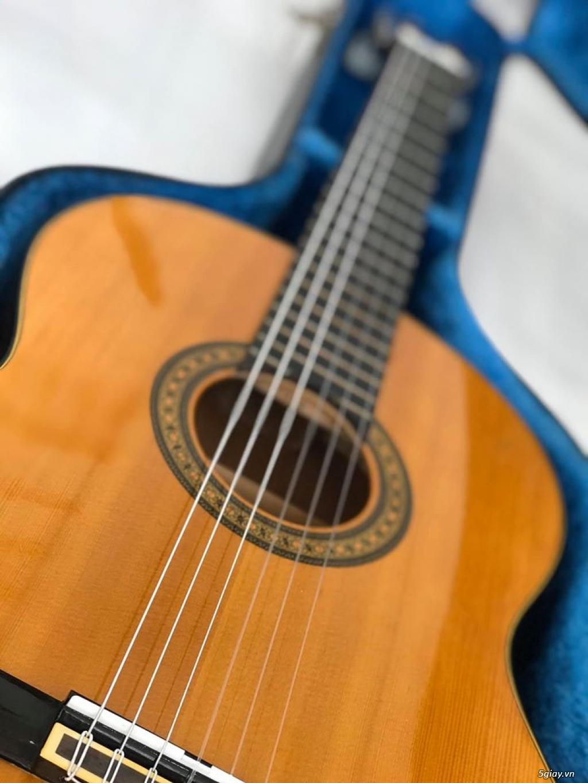 Cần bán : Guitar Yamaha nội địa Nhật - 12