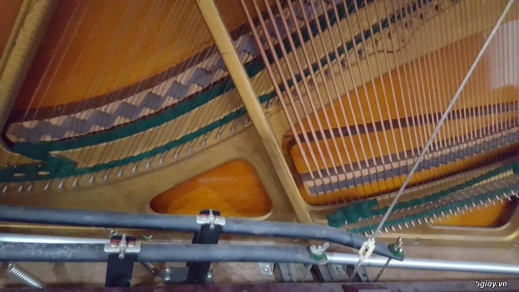ThanhLý Gấp Nhiều Đàn Piano Cơ/ Điện, Organ Nhật Giá Rẻ AE Mua Bán Lại - 10